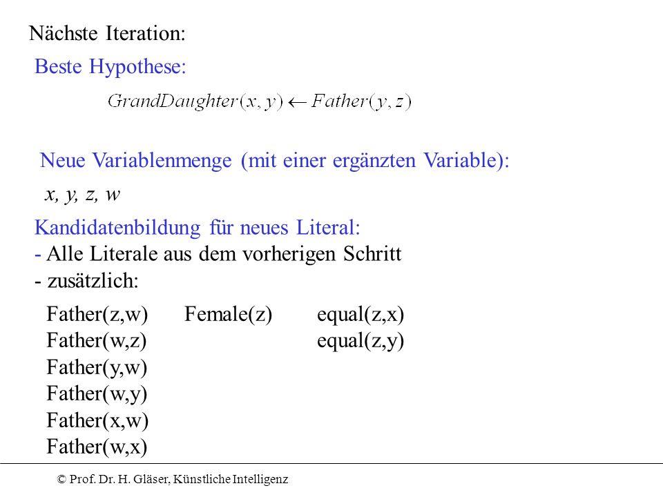 Nächste Iteration: Beste Hypothese: Neue Variablenmenge (mit einer ergänzten Variable): x, y, z, w.