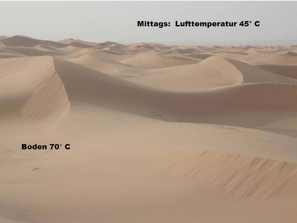 Mittags: Lufttemperatur 45° C