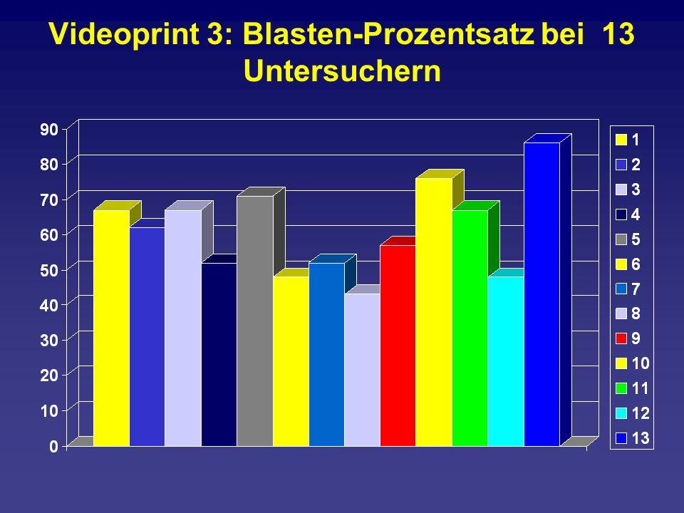 Videoprint 3: Blasten-Prozentsatz bei 13 Untersuchern