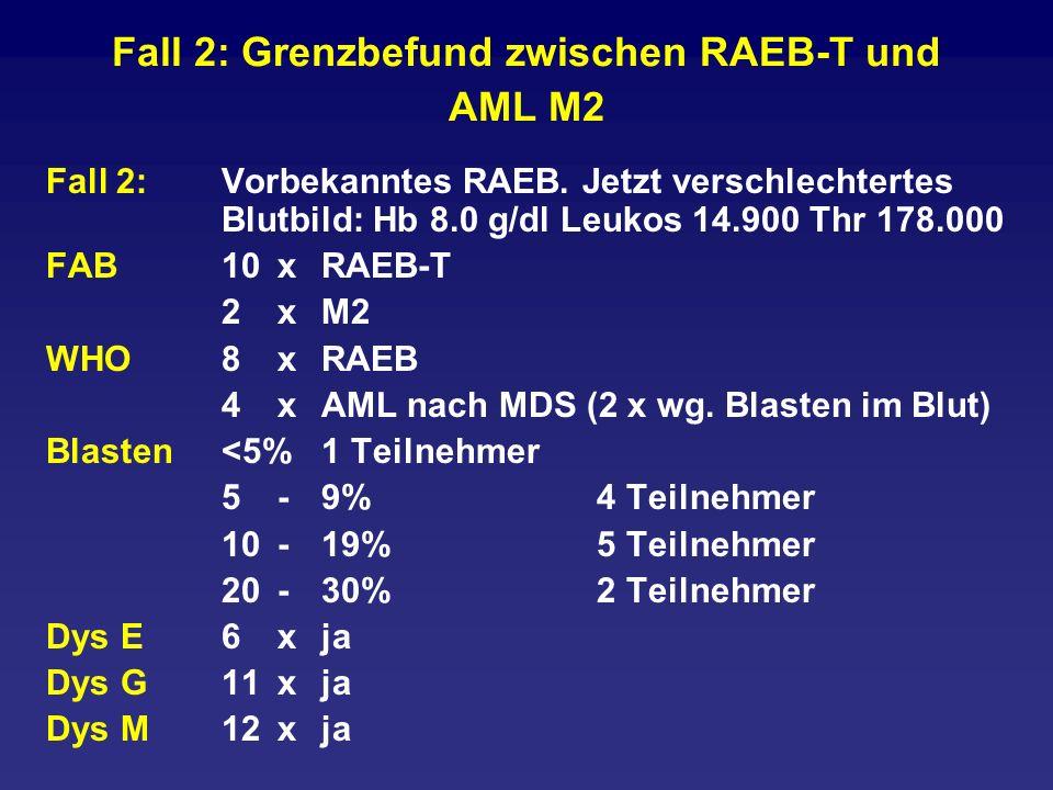 Fall 2: Grenzbefund zwischen RAEB-T und AML M2