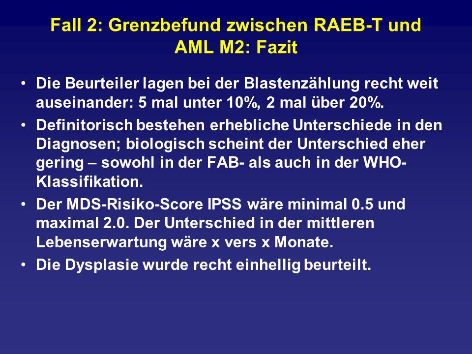 Fall 2: Grenzbefund zwischen RAEB-T und AML M2: Fazit