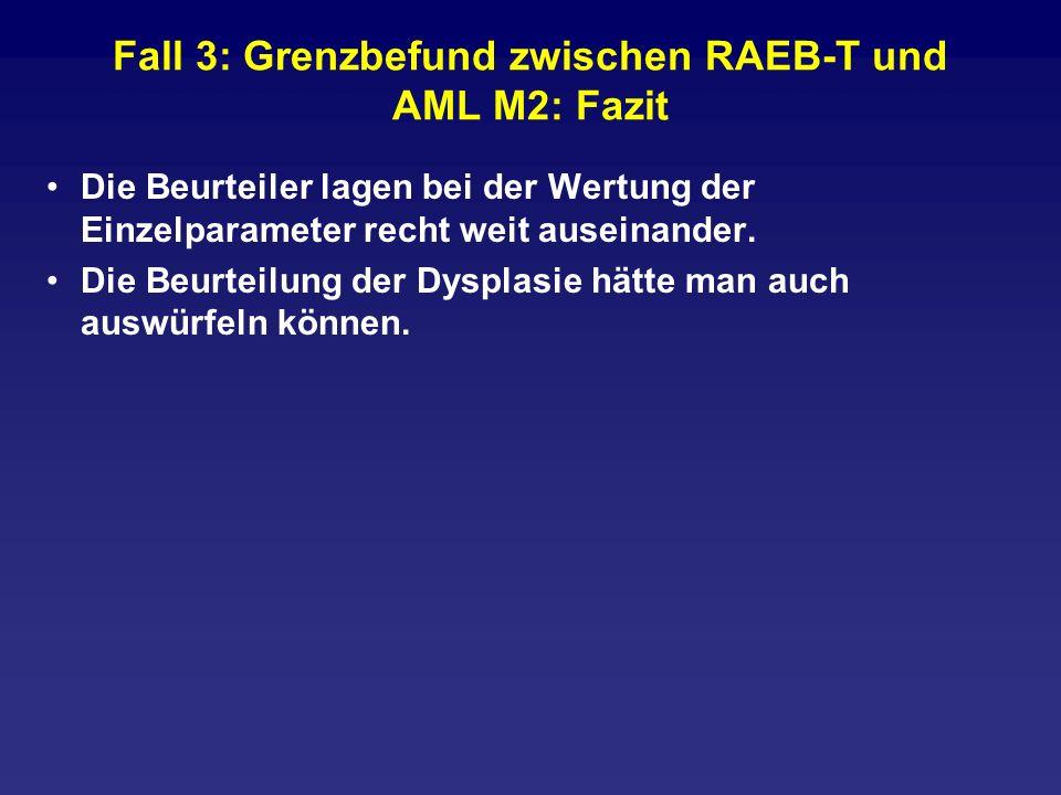 Fall 3: Grenzbefund zwischen RAEB-T und AML M2: Fazit