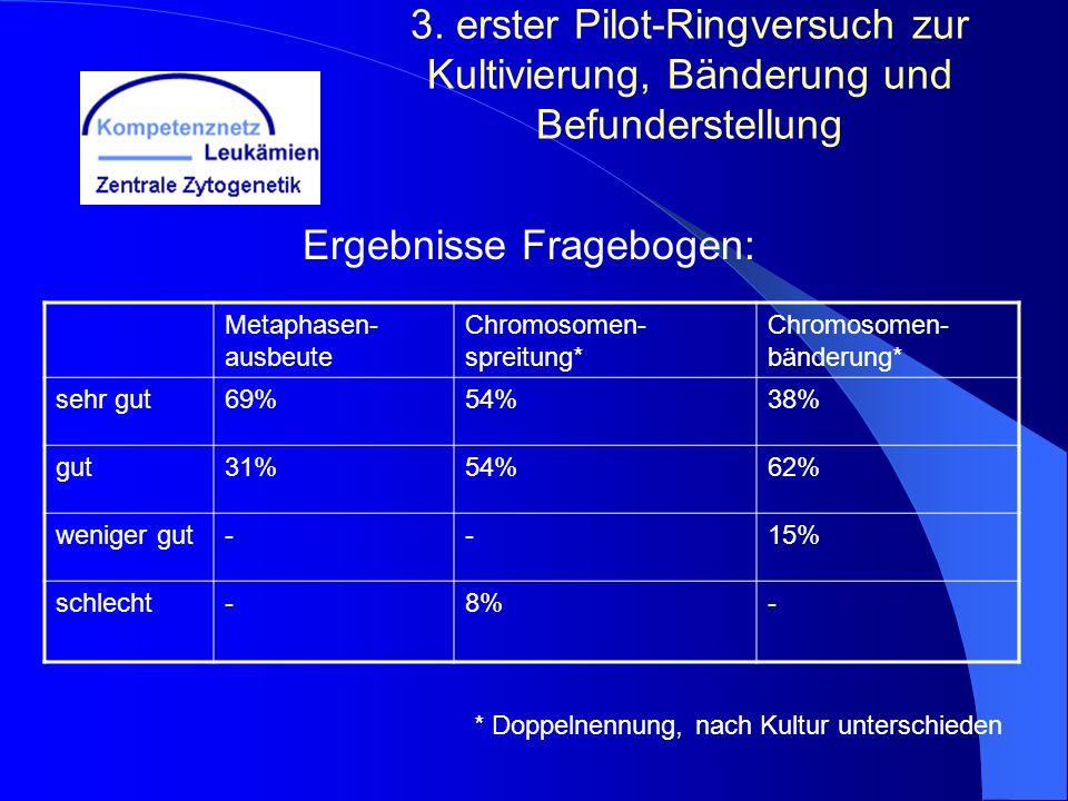 Ergebnisse Fragebogen: