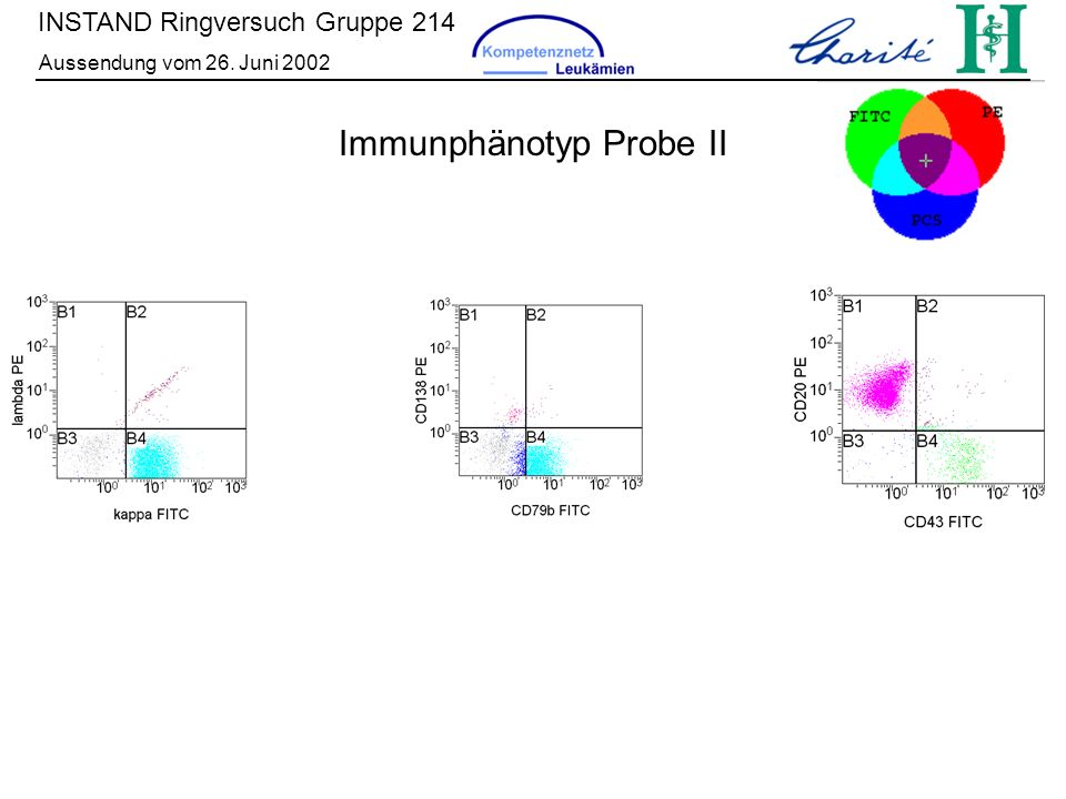 Immunphänotyp Probe II
