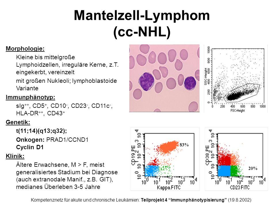 Mantelzell-Lymphom (cc-NHL)