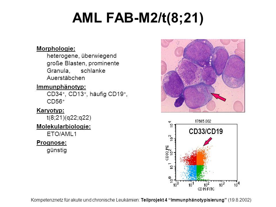 AML FAB-M2/t(8;21) Morphologie: heterogene, überwiegend große Blasten, prominente Granula, schlanke Auerstäbchen.