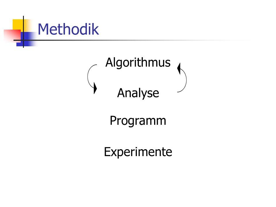 Methodik Algorithmus Analyse Programm Experimente