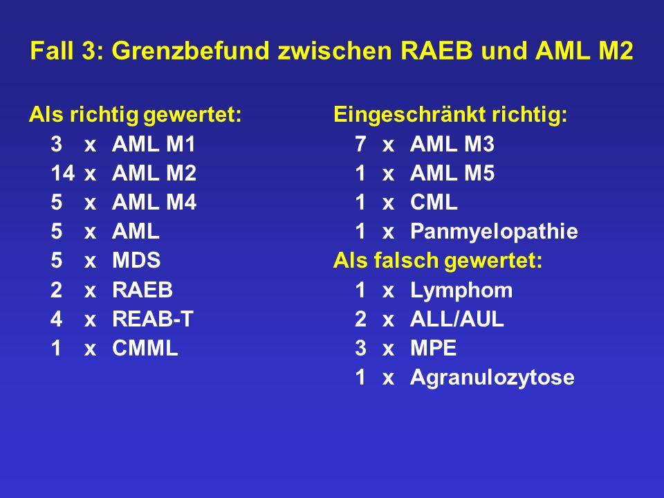 Fall 3: Grenzbefund zwischen RAEB und AML M2