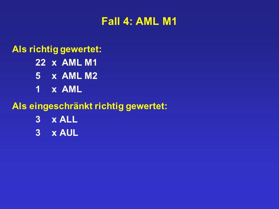 Fall 4: AML M1 Als richtig gewertet: 22 x AML M1 5 x AML M2 1 x AML