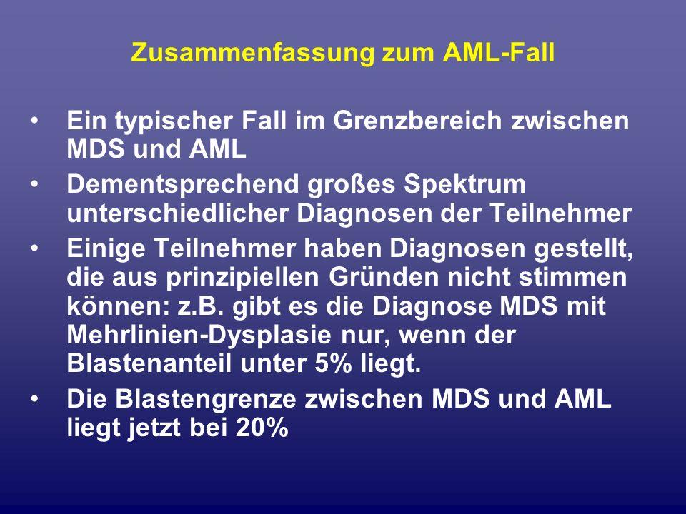 Zusammenfassung zum AML-Fall