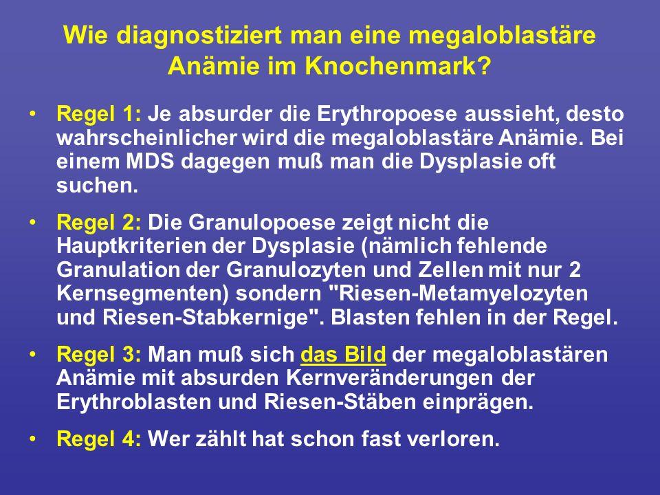 Wie diagnostiziert man eine megaloblastäre Anämie im Knochenmark