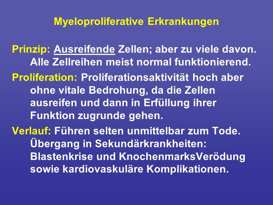 Myeloproliferative Erkrankungen