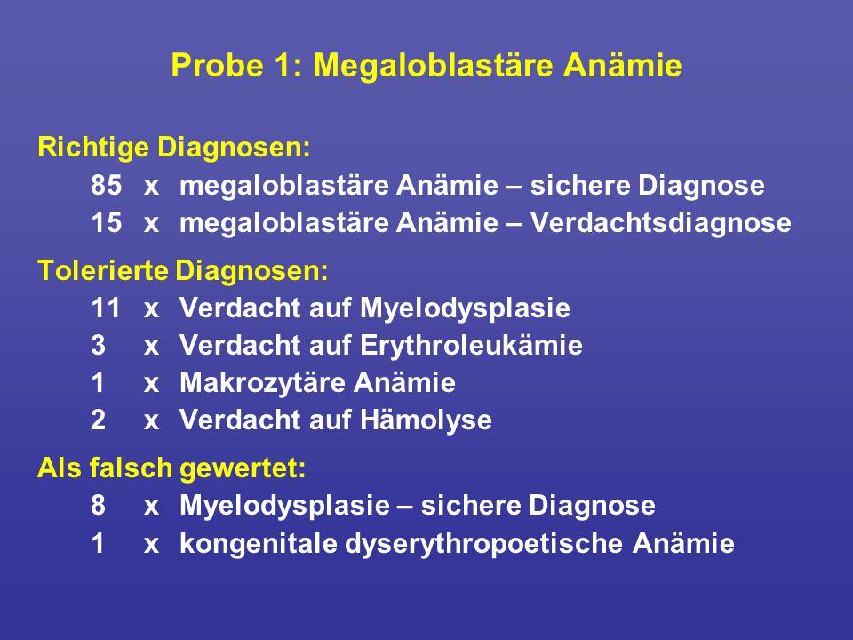 Probe 1: Megaloblastäre Anämie