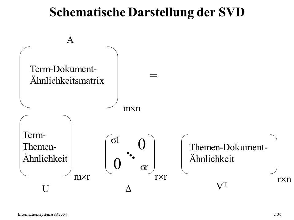 Schematische Darstellung der SVD