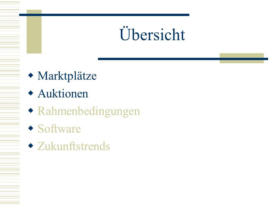 Übersicht Marktplätze Auktionen Rahmenbedingungen Software