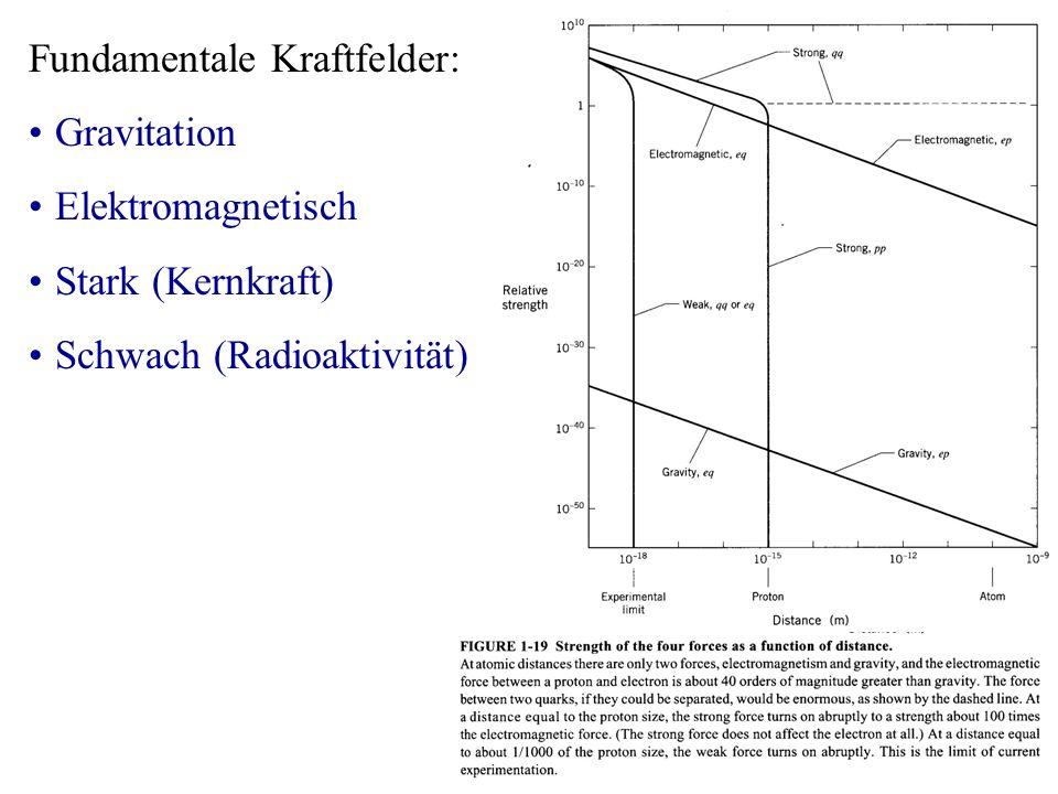 Fundamentale Kraftfelder: