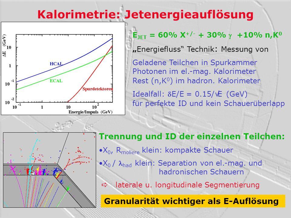 Kalorimetrie: Jetenergieauflösung
