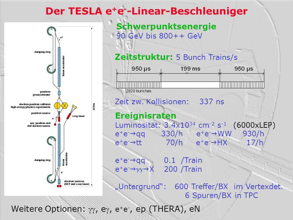 Der TESLA e+e--Linear-Beschleuniger