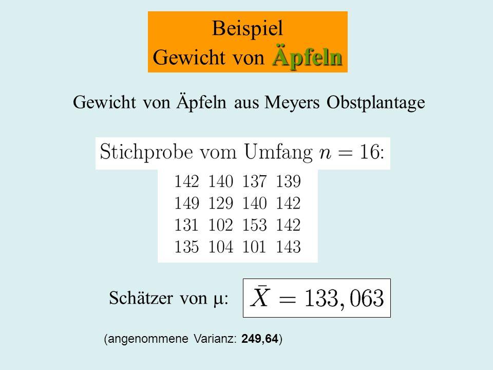 Beispiel Gewicht von Äpfeln Gewicht von Äpfeln aus Meyers Obstplantage