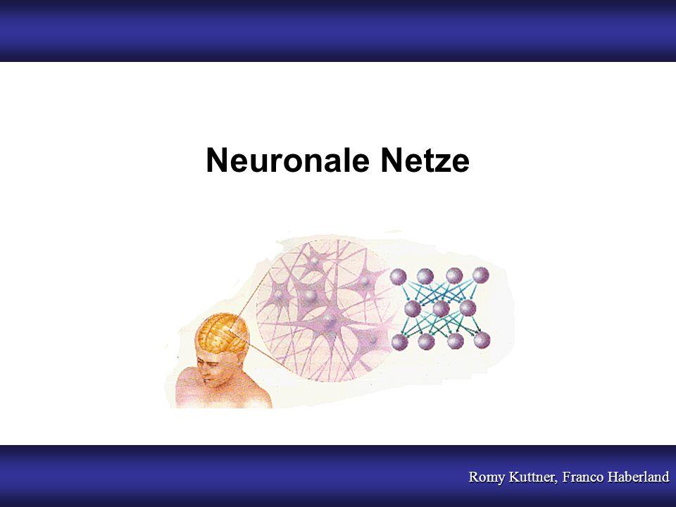 Neuronale Netze Romy Kuttner, Franco Haberland