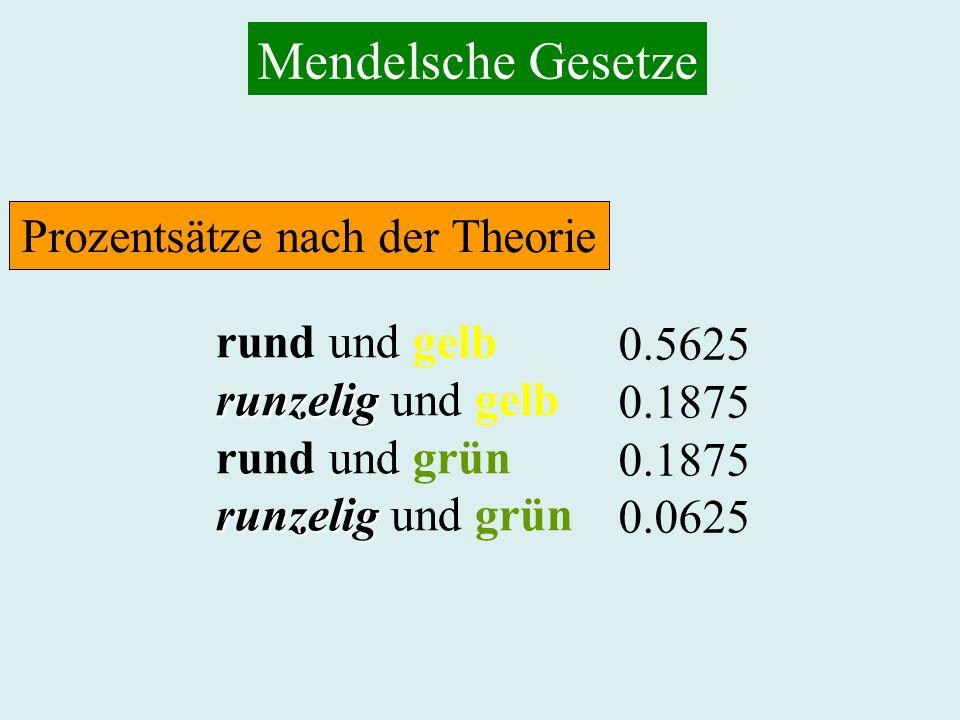 Prozentsätze nach der Theorie