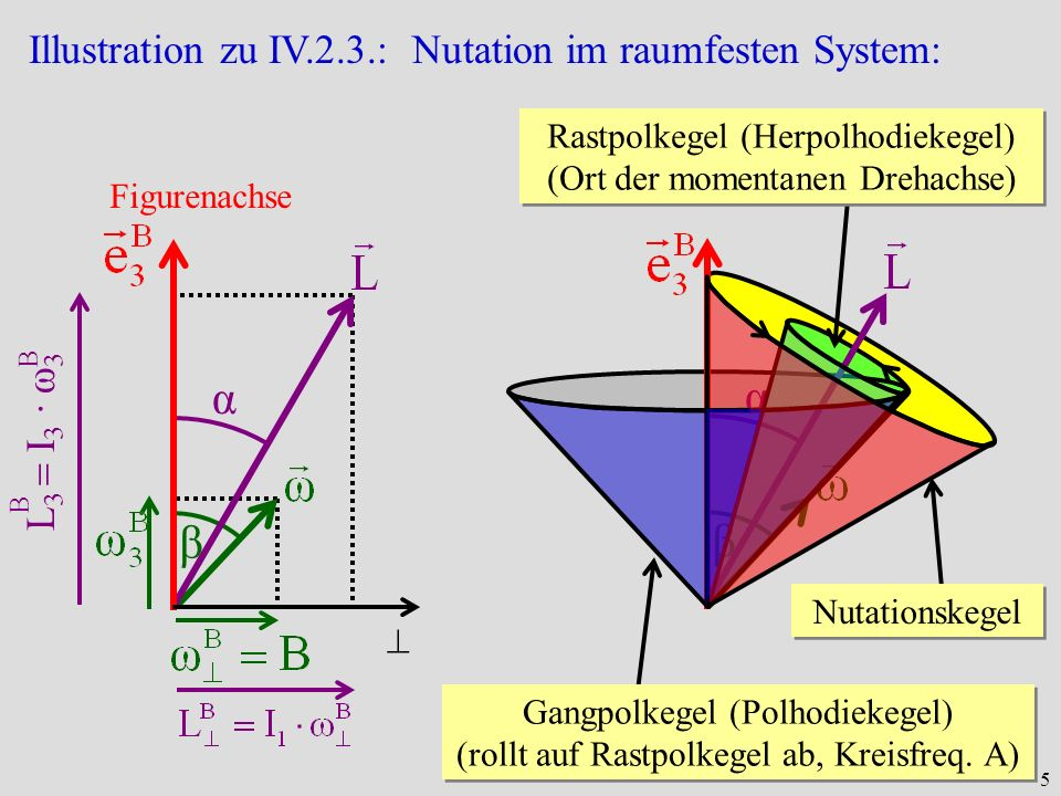 α α β β Illustration zu IV.2.3.: Nutation im raumfesten System: