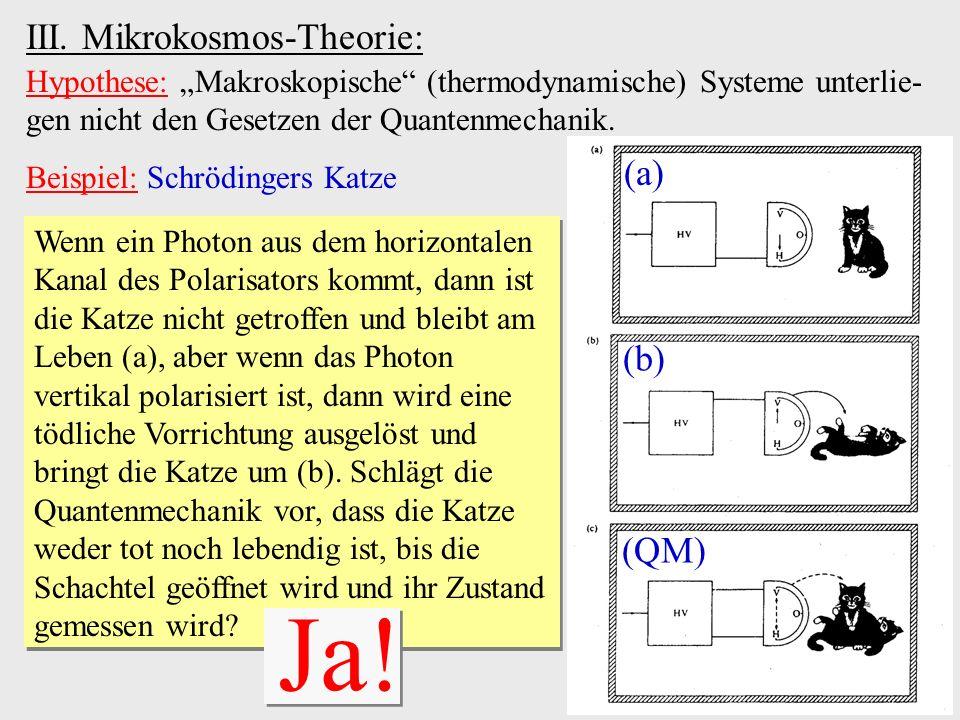 Ja! III. Mikrokosmos-Theorie: (a) (b) (QM)