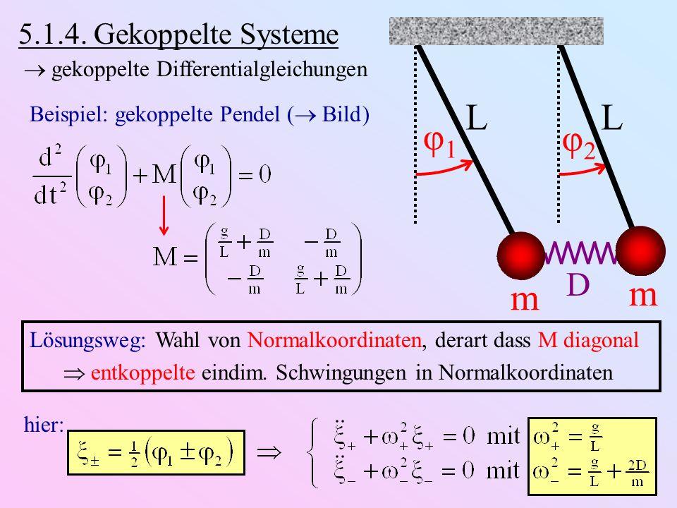 L φ1 φ2 m D 5.1.4. Gekoppelte Systeme