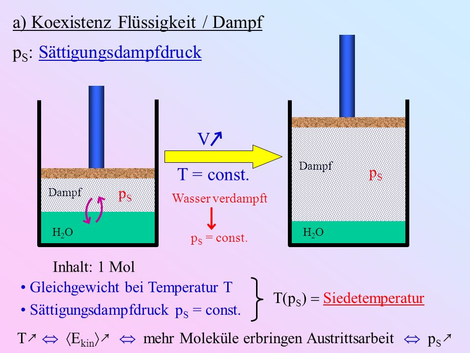 a) Koexistenz Flüssigkeit / Dampf