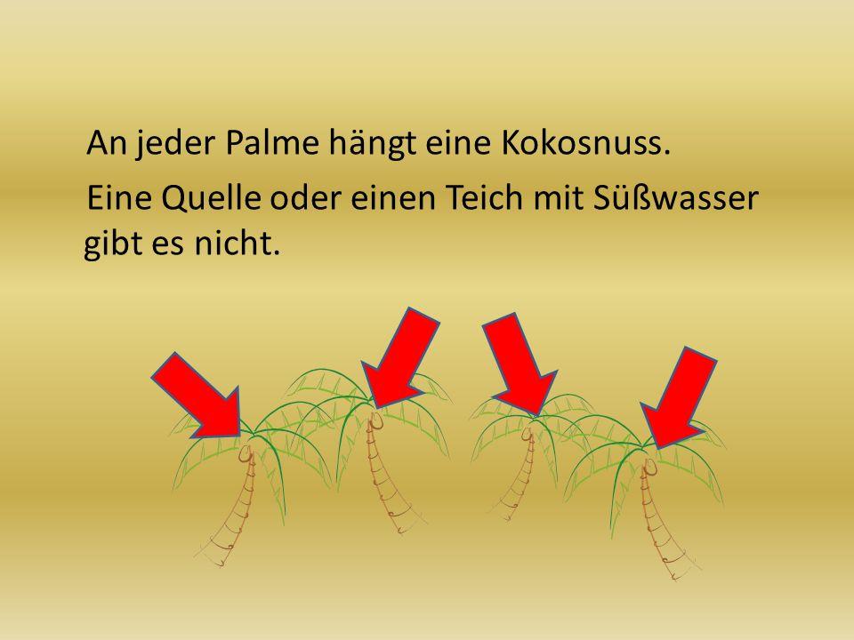 An jeder Palme hängt eine Kokosnuss