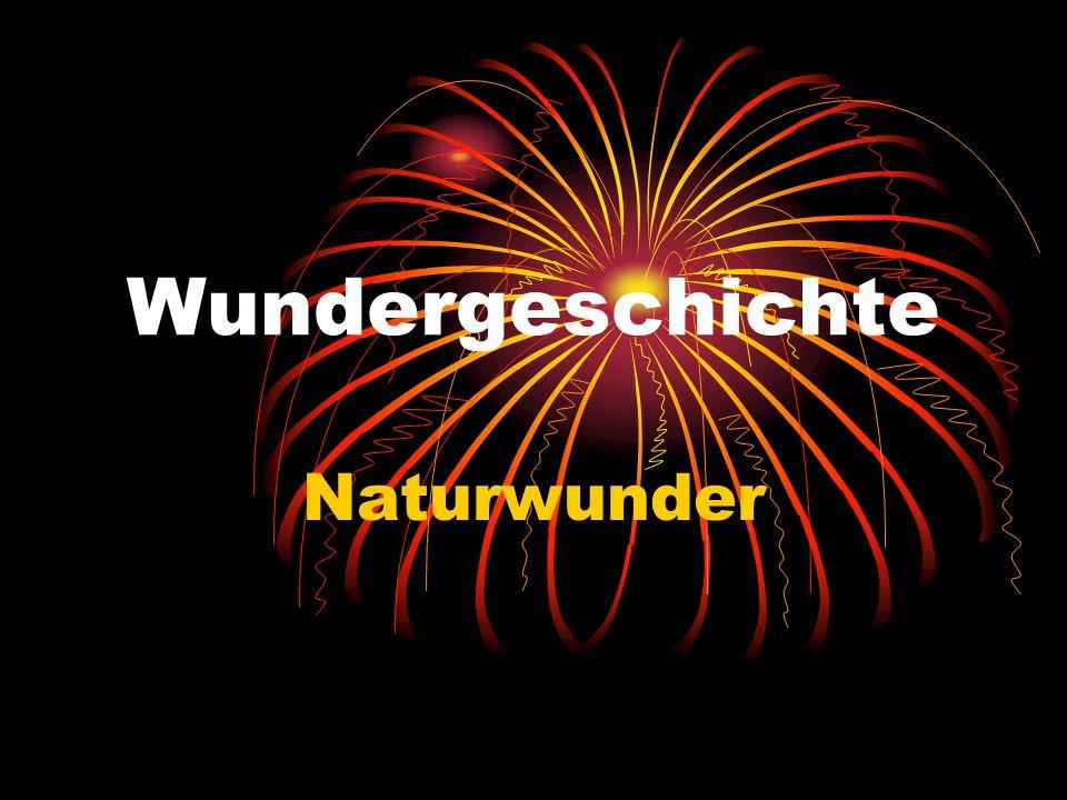 Wundergeschichte Naturwunder