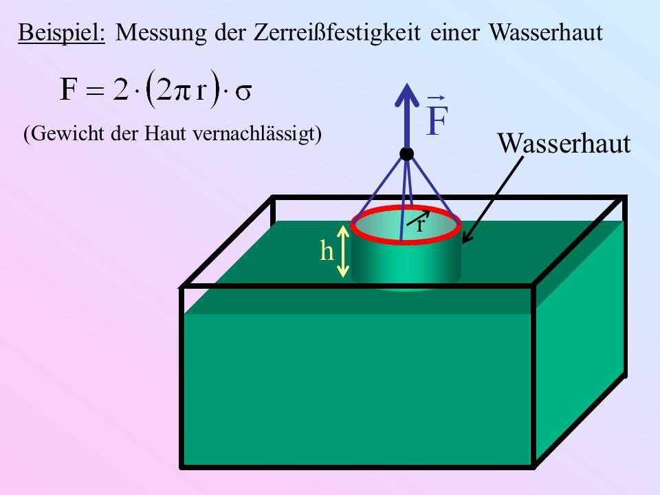 Wasserhaut h Beispiel: Messung der Zerreißfestigkeit einer Wasserhaut