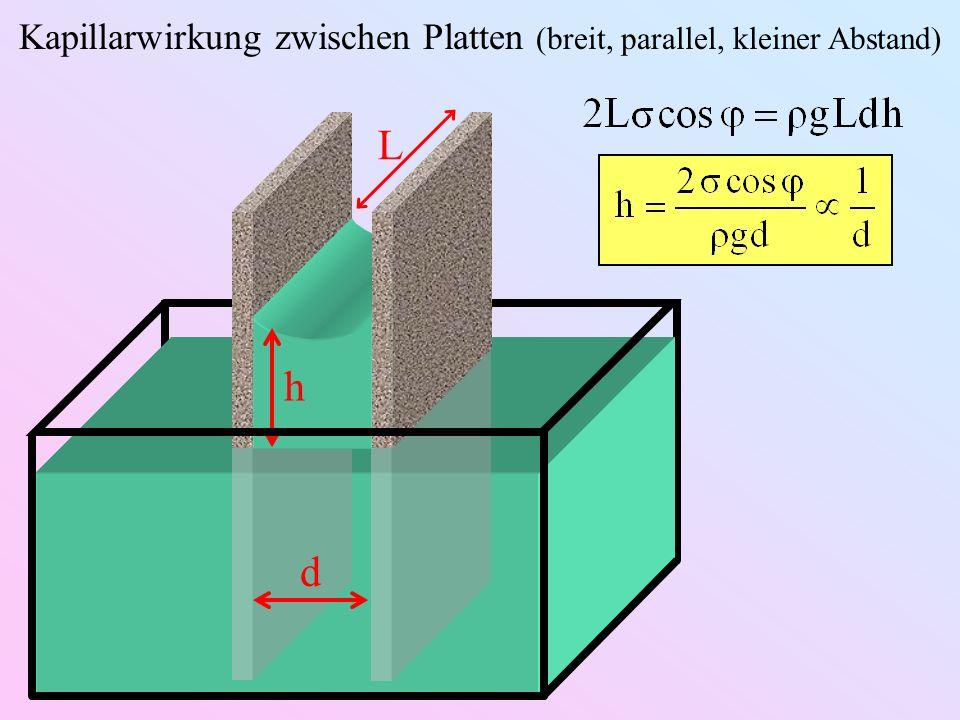 Kapillarwirkung zwischen Platten (breit, parallel, kleiner Abstand)