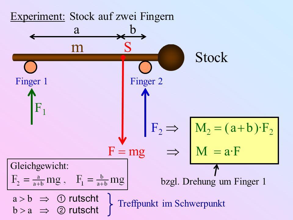 m S Stock a b F1 F2  M2  ( a  b )·F2 F  mg  M  a·F