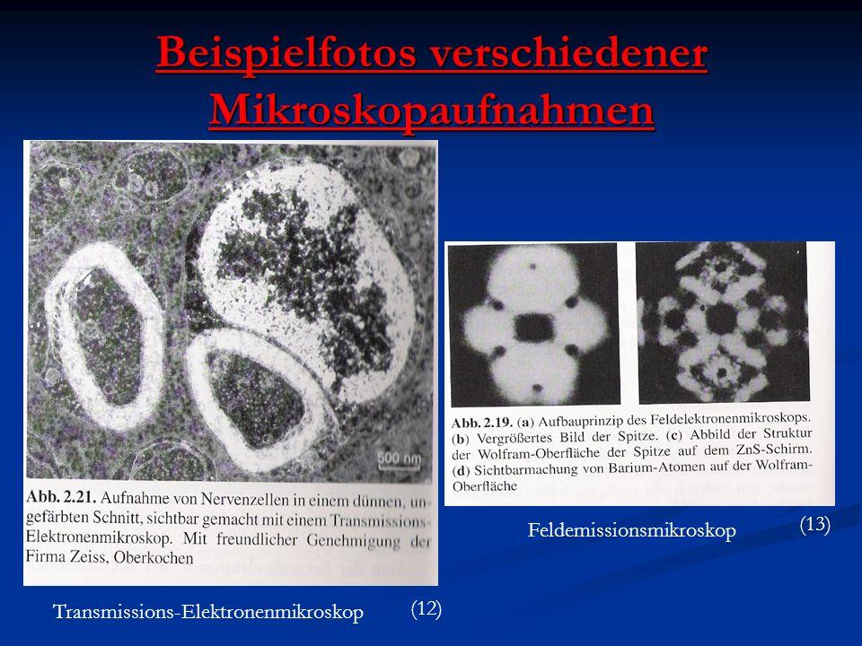 Beispielfotos verschiedener Mikroskopaufnahmen