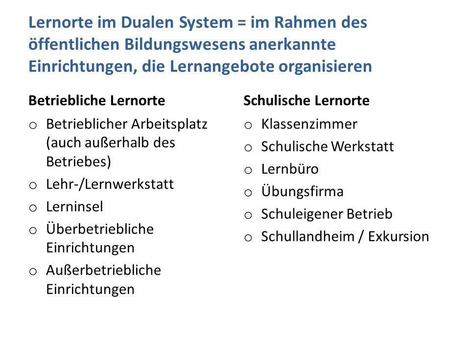 Lernorte im Dualen System = im Rahmen des öffentlichen Bildungswesens anerkannte Einrichtungen, die Lernangebote organisieren