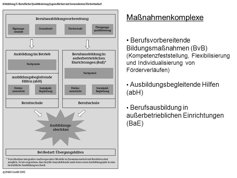 MaßnahmenkomplexeBerufsvorbereitende Bildungsmaßnahmen (BvB) (Kompetenzfeststellung, Flexibilisierung und Individualisierung von Förderverläufen)