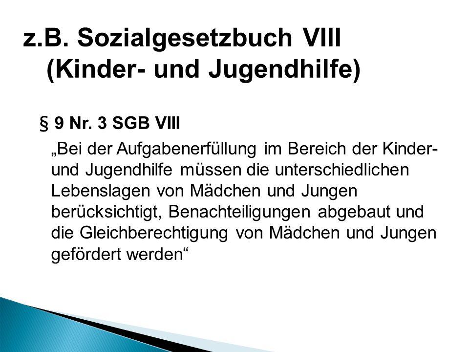 z.B. Sozialgesetzbuch VIII (Kinder- und Jugendhilfe)