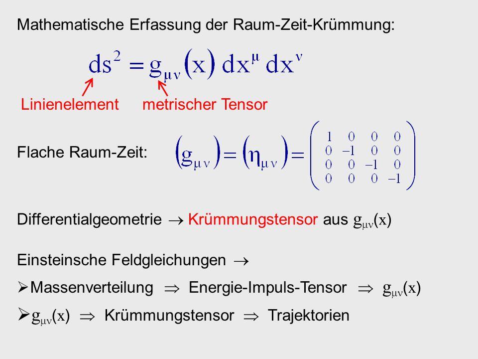 g(x)  Krümmungstensor  Trajektorien