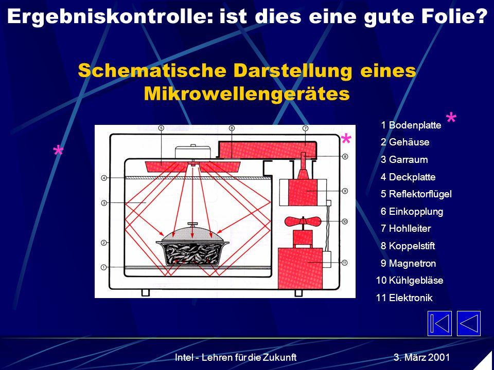 Schematische Darstellung eines Mikrowellengerätes