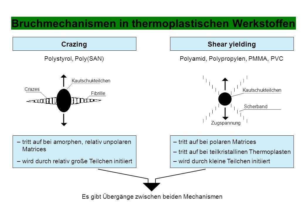 Bruchmechanismen in thermoplastischen Werkstoffen