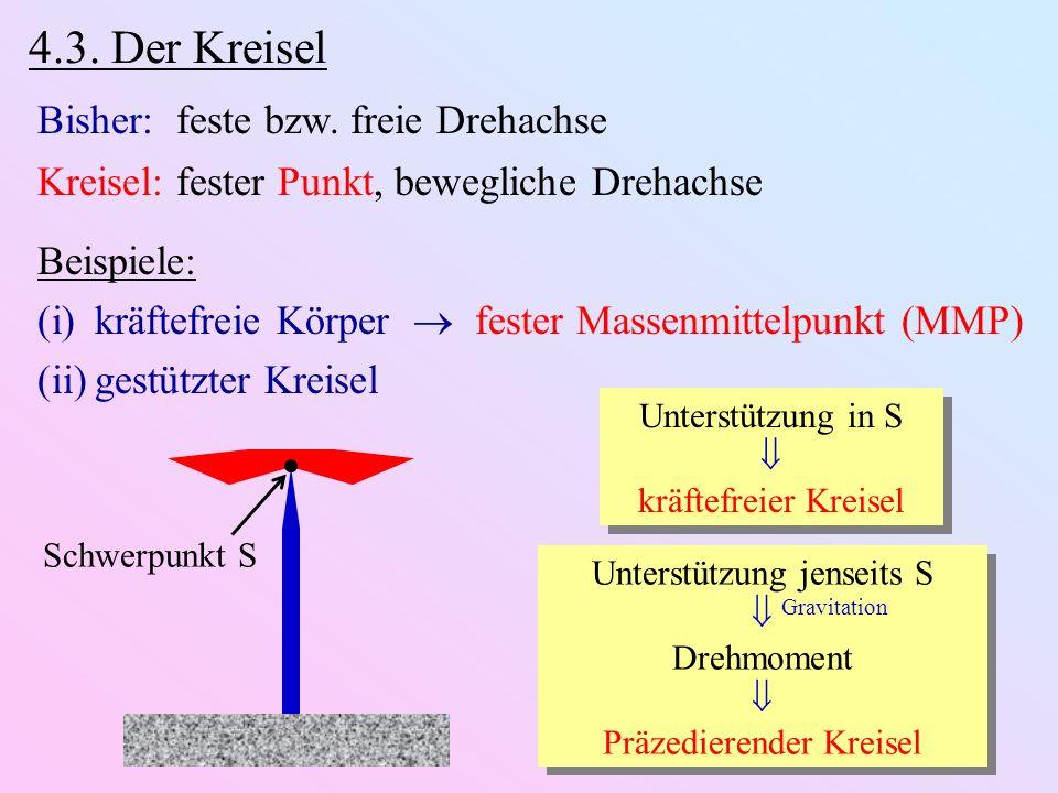 4.3. Der Kreisel Bisher: feste bzw. freie Drehachse