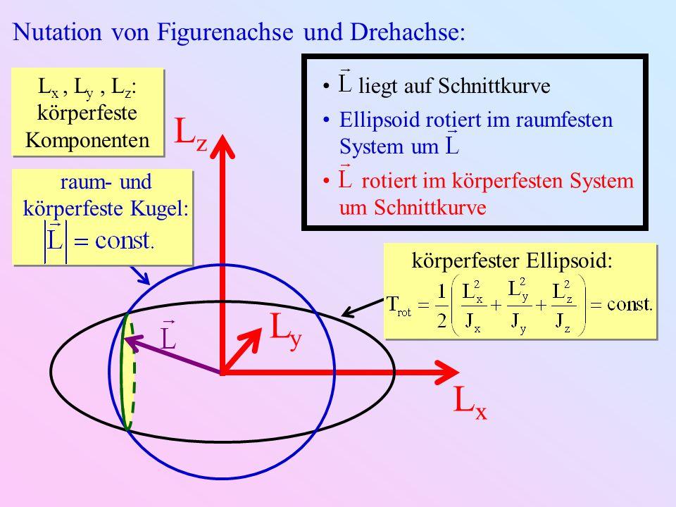 Lz Ly Lx Nutation von Figurenachse und Drehachse: