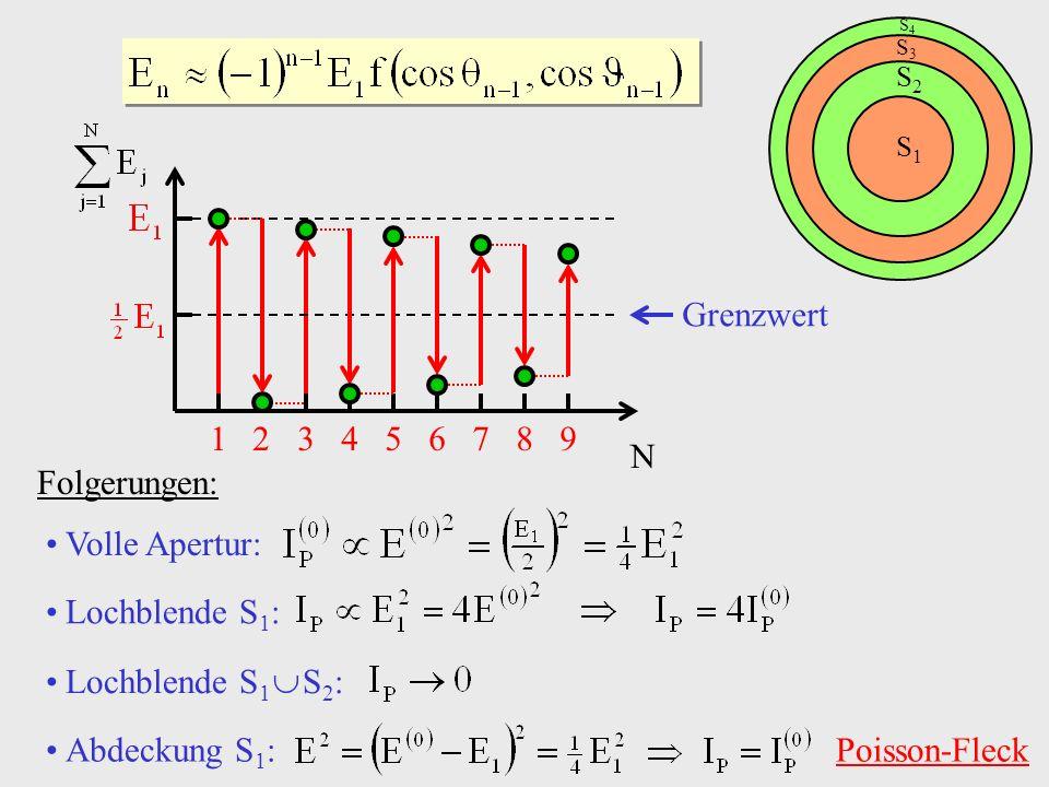 Abdeckung S1: Poisson-Fleck