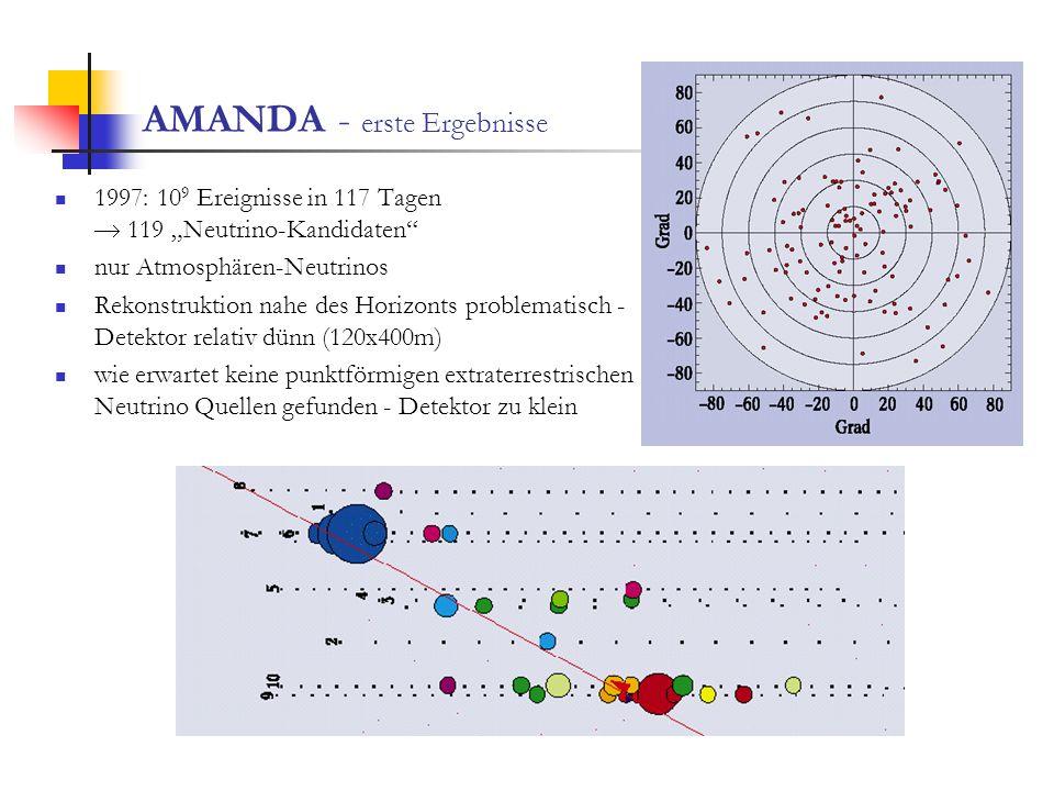 AMANDA - erste Ergebnisse