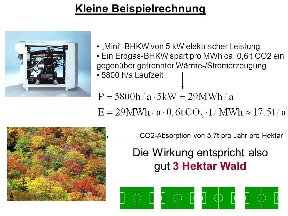 Die Wirkung entspricht also gut 3 Hektar Wald