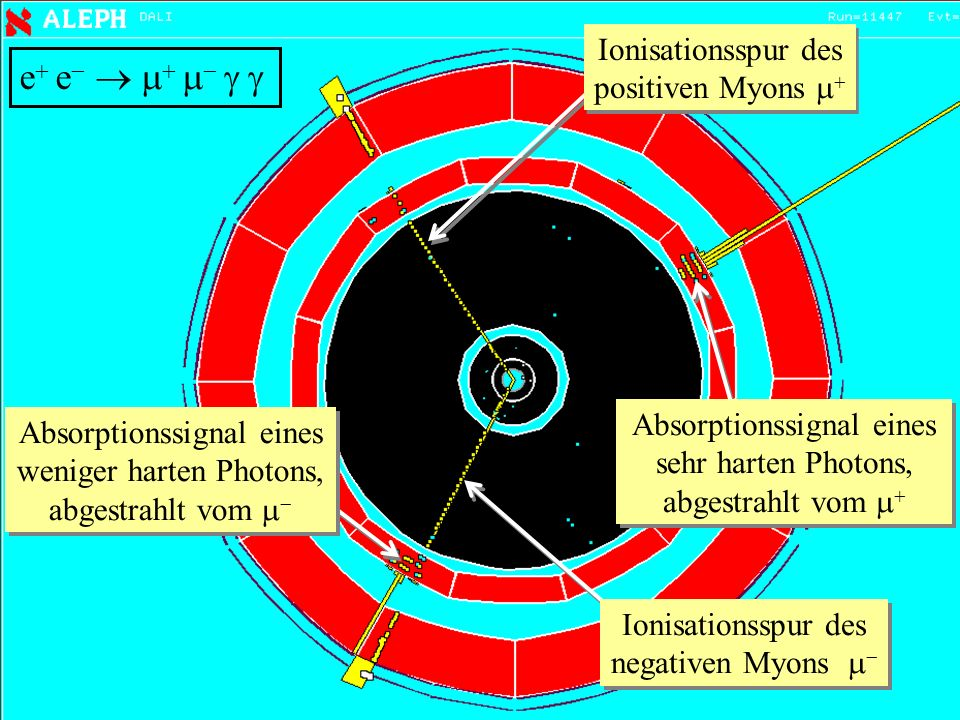 e e      Ionisationsspur des positiven Myons 