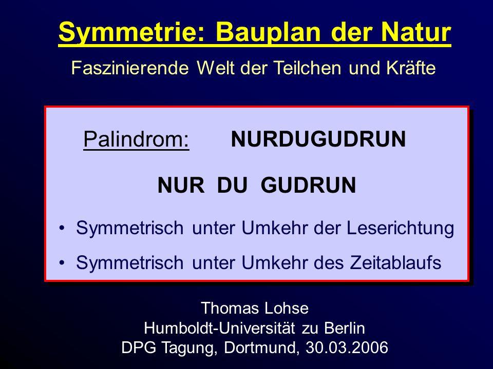 Symmetrie: Bauplan der Natur