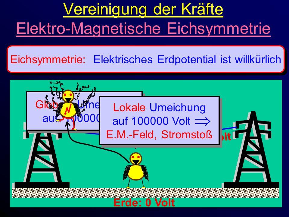 Vereinigung der Kräfte Elektro-Magnetische Eichsymmetrie