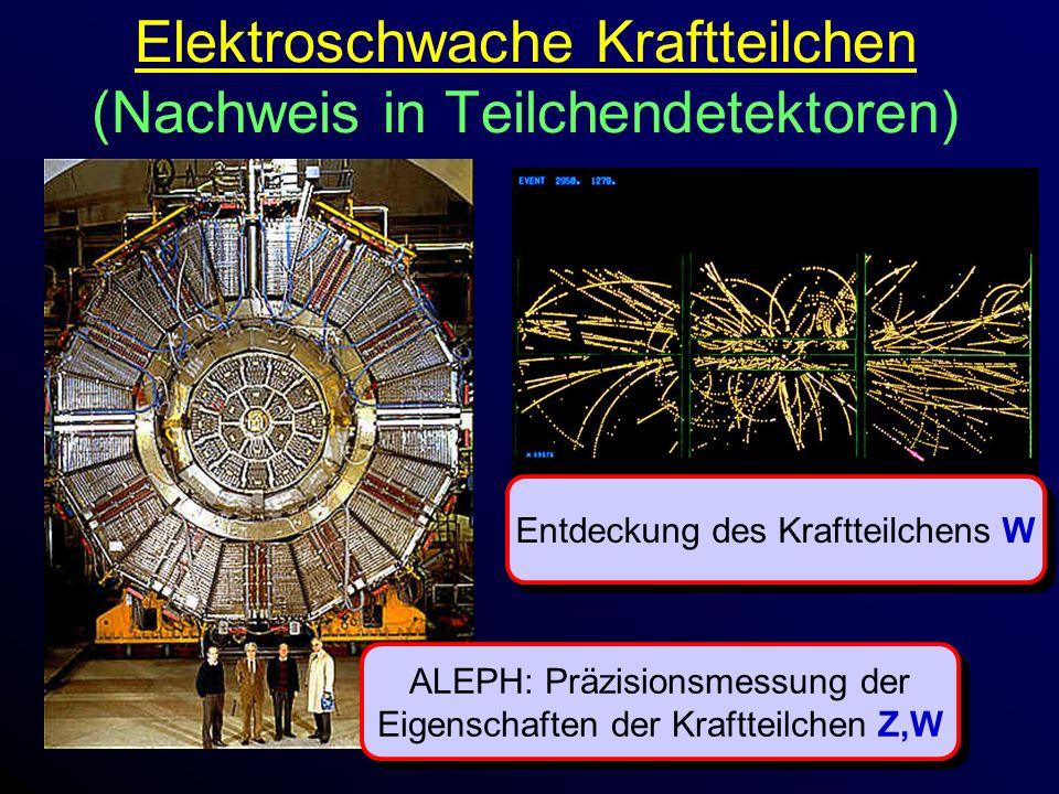 Elektroschwache Kraftteilchen (Nachweis in Teilchendetektoren)
